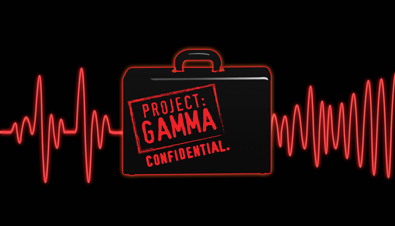 project gamma Gamma construction ltd is a wholly-owned subsidiary of gamma civic ltd, a public listed company on the stock exchange of mauritius we adopt world class practices in corporate governance to build a financially sound and resilient company.